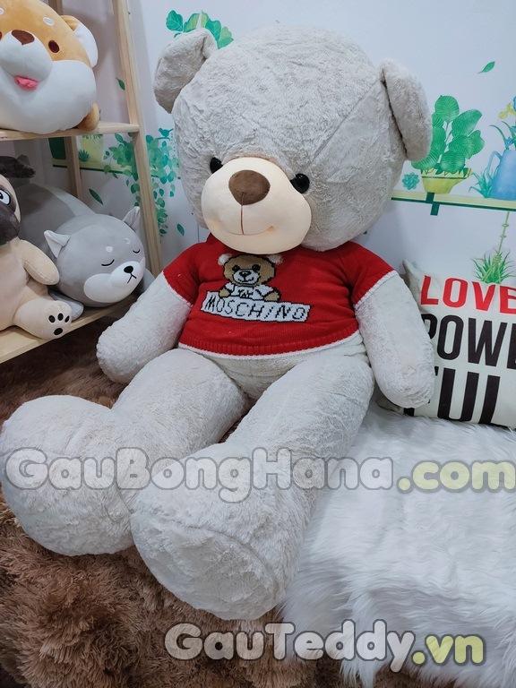 Gấu Bông Moschino