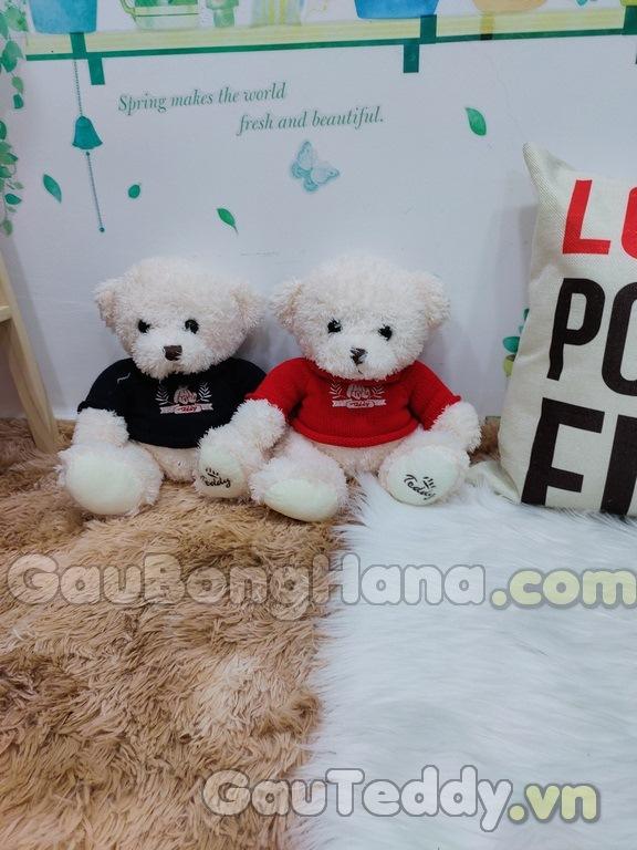 Gấu Teddy Lông Chỉ
