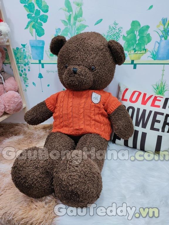Gấu Bông Nâu Áo Cam