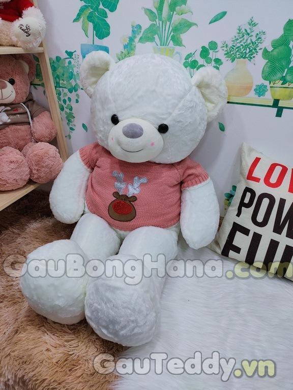 Gấu Bông Trắng Áo Hồng