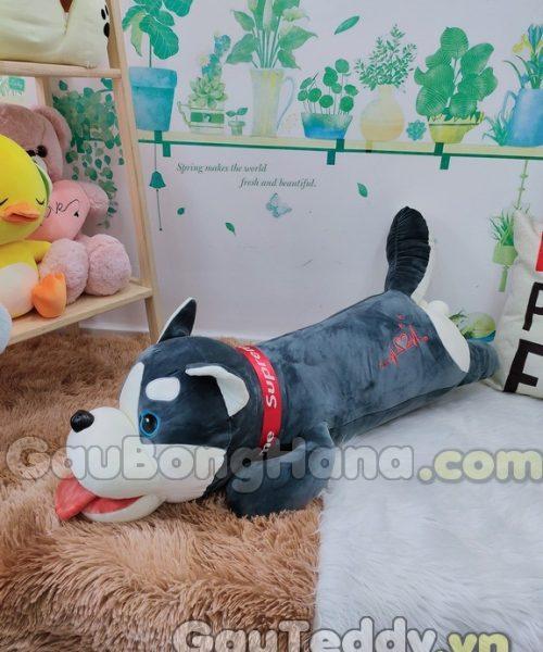 Chó Nằm Superme