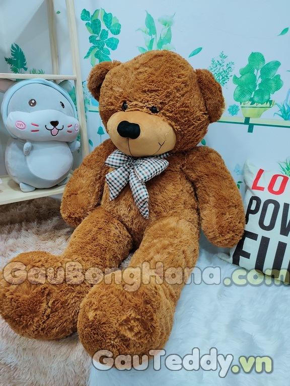 Gấu Bông Boyds
