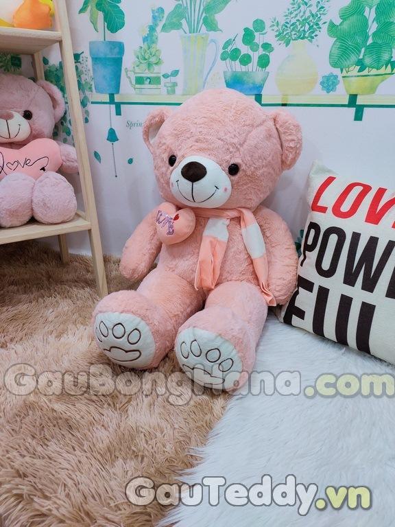 Gấu Bông Hồng Khăn Tim