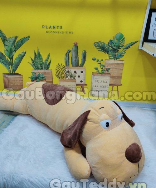 Chó Lười Lưng Tim