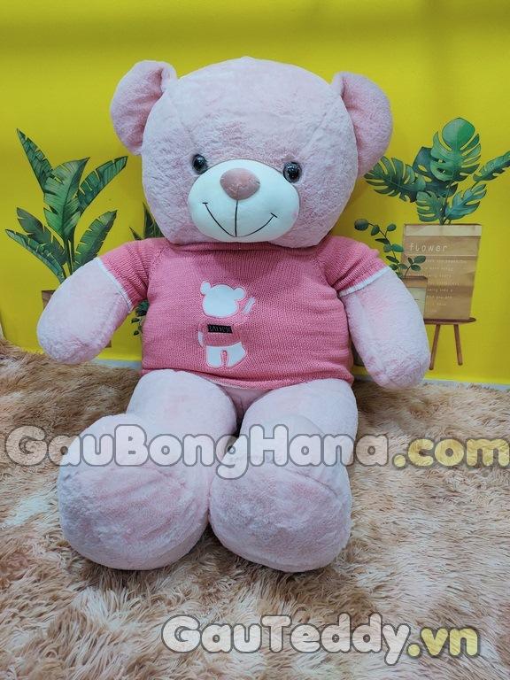 Gấu Bông Hồng Áo Gấu Hồng