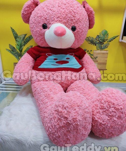 Gấu Bông Hồng Áo Gấu