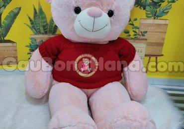Gấu Bông Hồng Áo Đỏ