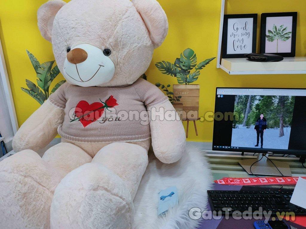 Gấu BôngNâu Áo Hoa