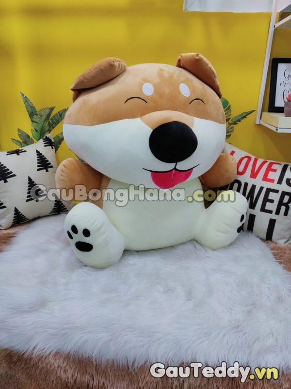 Chó Shiaba Ngồi