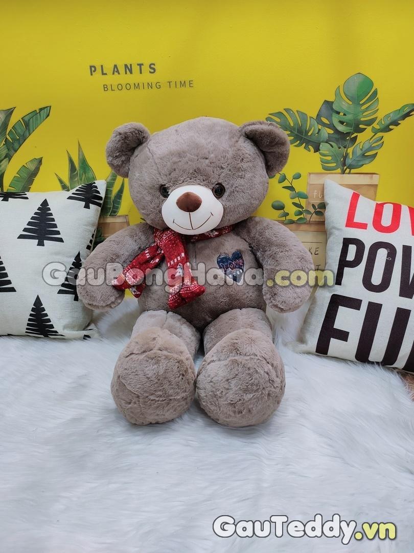 Gấu Teddy Shawls Nâu