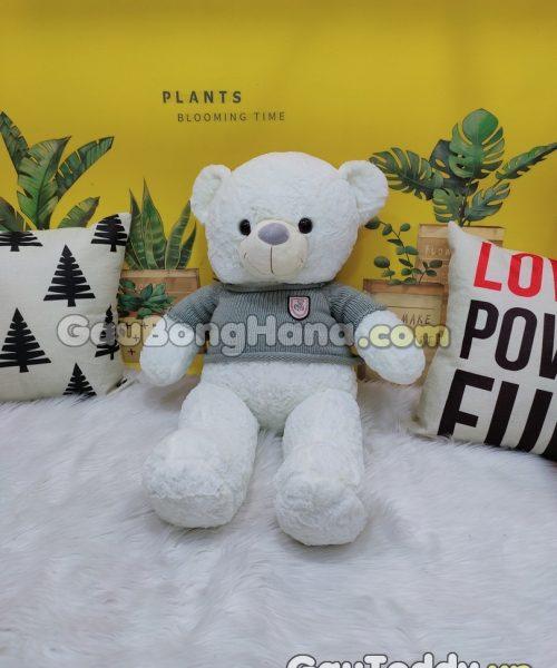 Gấu Bông Trắng Áo Xám