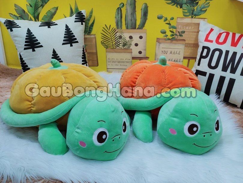 Rùa Bông Bí Ngô