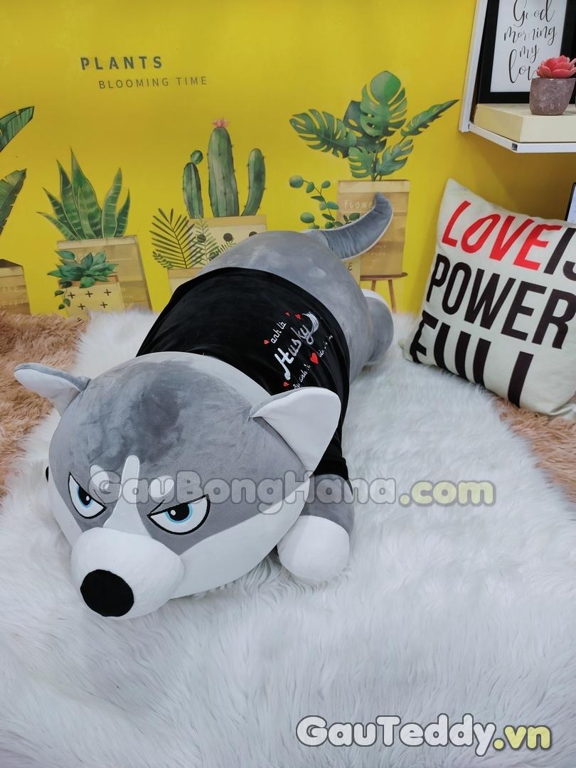 Chó Husky Áo Nhung